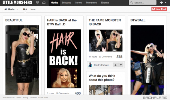 littlemonsters, red social de lady gaga