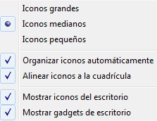 organizar iconos windows 7